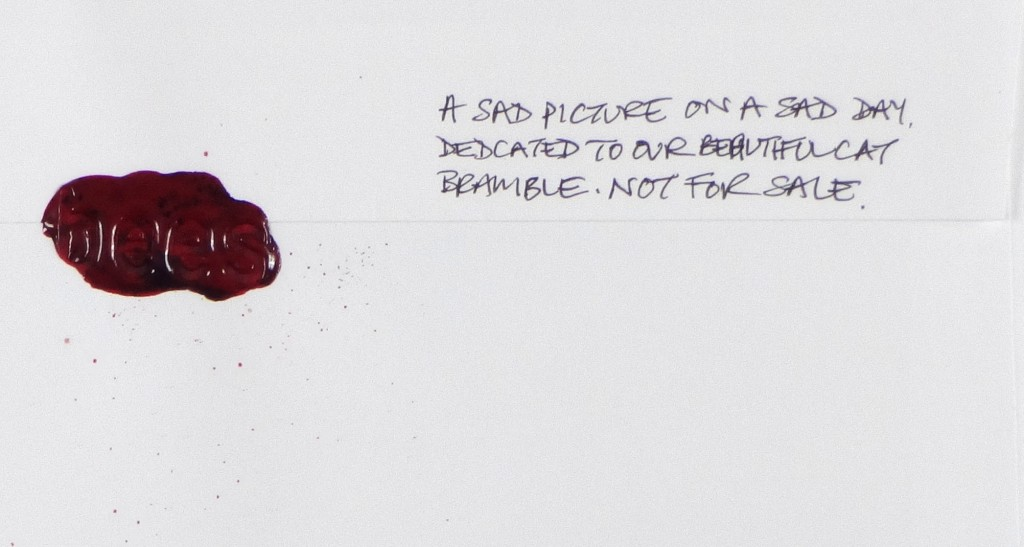 Dedication to Bramble on the back of the envelope of #Letter365 No181